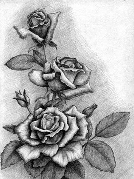 Красивые рисунки цветов для срисовки в свой дневник - 40 лучших идей (10)