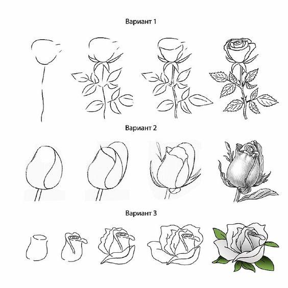 Красивые рисунки цветов для срисовки в свой дневник - 40 лучших идей (18)