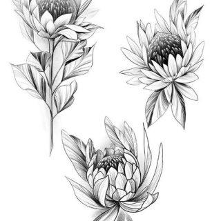 Красивые рисунки цветов для срисовки в свой дневник   40 лучших идей (21)