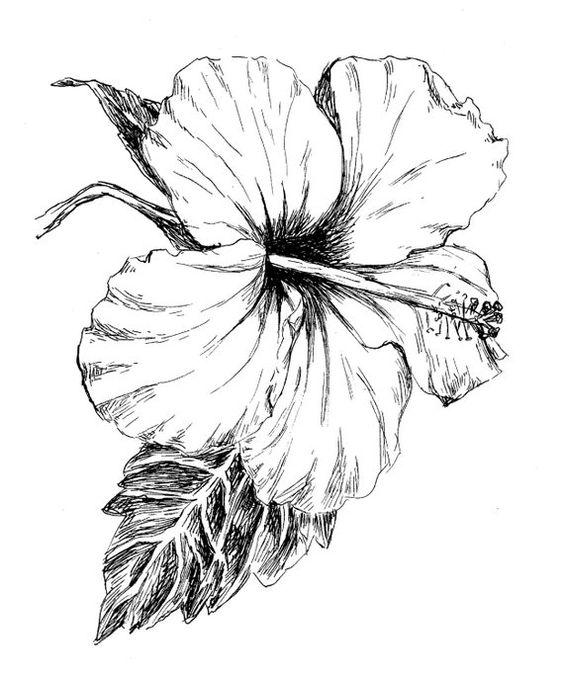 Красивые рисунки цветов для срисовки в свой дневник - 40 лучших идей (39)