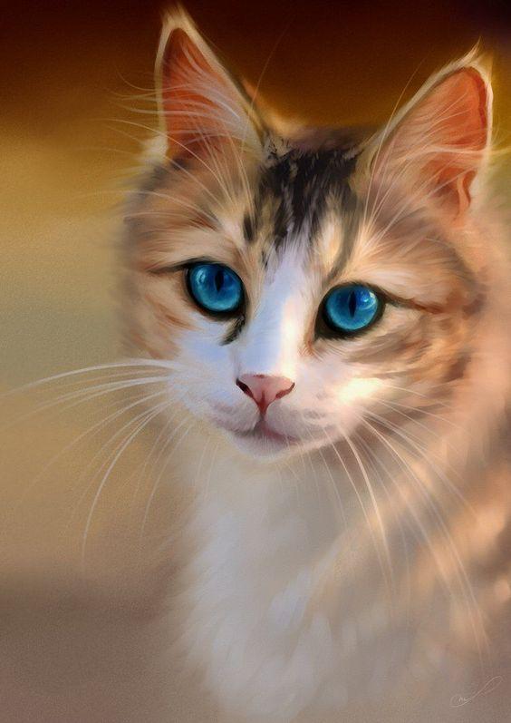 Красивые фотографии глаз кошек в отличном качестве (3)