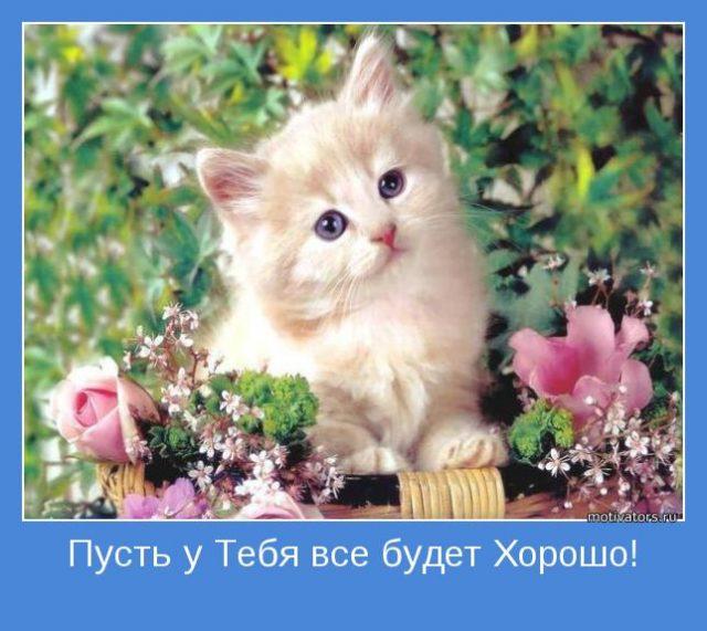 Пусть у тебя все будет отлично красивые картинки и открытки (7)