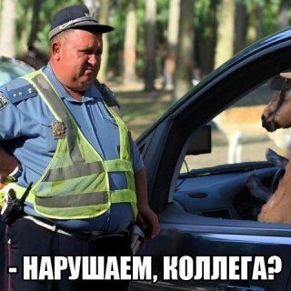 Смешные фото приколы с ментами и полицией   подборка (3)