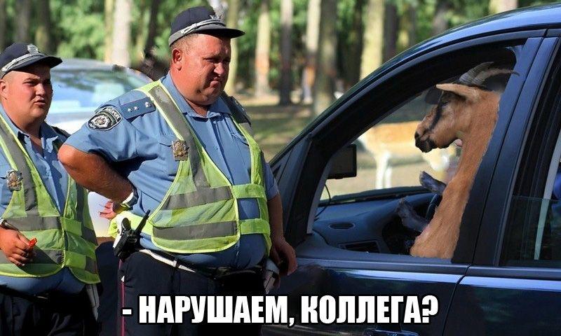 Смешные фото приколы с ментами и полицией - подборка (3)