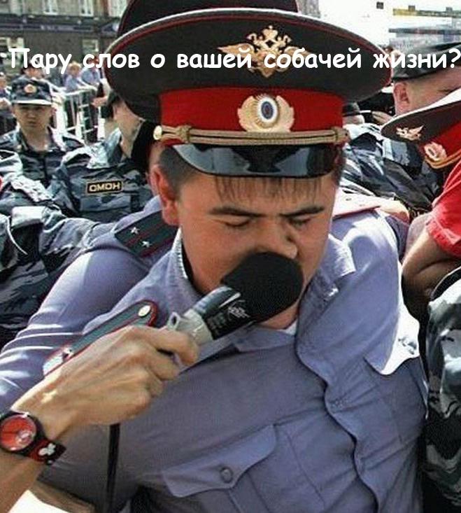 Смешные фото приколы с ментами и полицией - подборка (6)