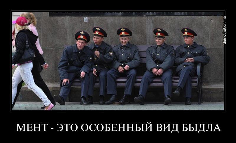 Смешные фото приколы с ментами и полицией - подборка (7)