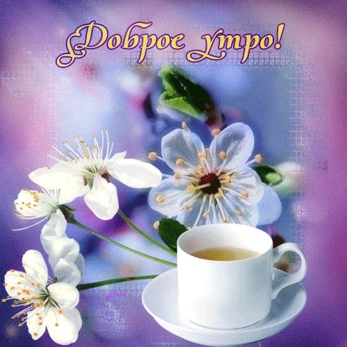 Доброе утро весны, отличные открытки на утренний настрой (11)
