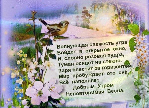 Доброе утро весны, отличные открытки на утренний настрой (13)