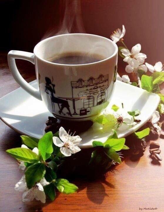 Доброе утро весны, отличные открытки на утренний настрой (16)