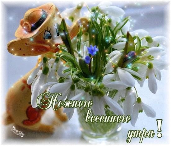 Доброе утро весны, отличные открытки на утренний настрой (17)