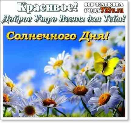 Доброе утро весны, отличные открытки на утренний настрой (21)