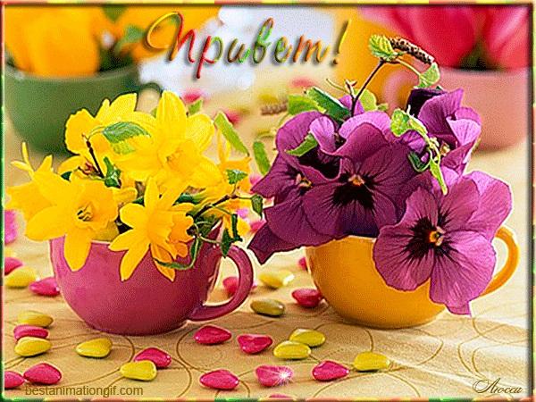 Доброе утро весны, отличные открытки на утренний настрой (5)