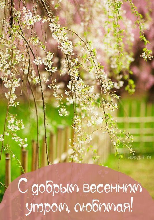 Доброе утро весны, отличные открытки на утренний настрой (7)