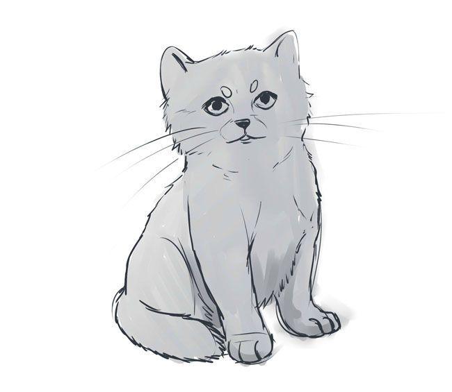 Аниме животные для срисовки - большая подборка (17)