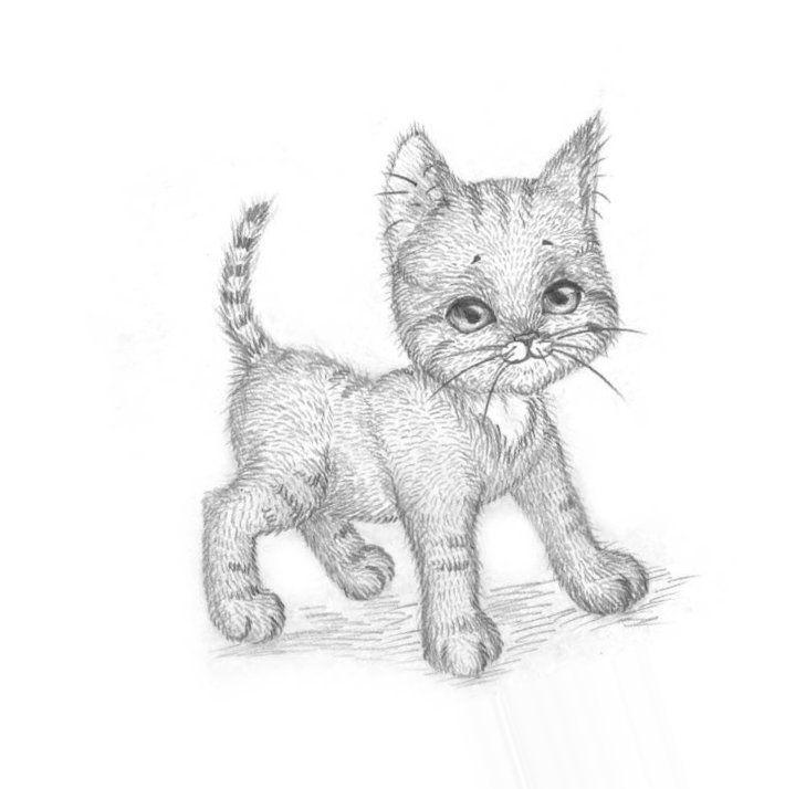 Аниме животные для срисовки - большая подборка (4)