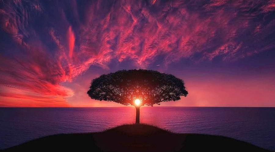 В чем красота природы Сочинение и пояснение (3)