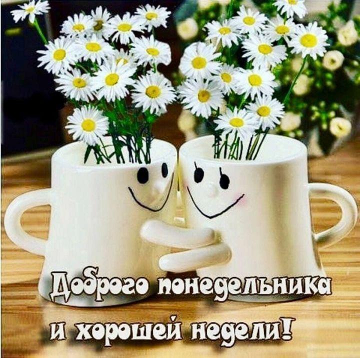 Доброго утра понедельника и удачной недели (10)