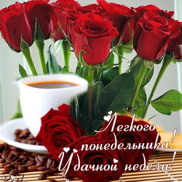 Доброго утра понедельника и удачной недели (15)