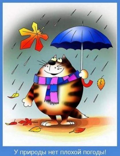 Доброе утро в плохую погоду - подборка открыток (8)