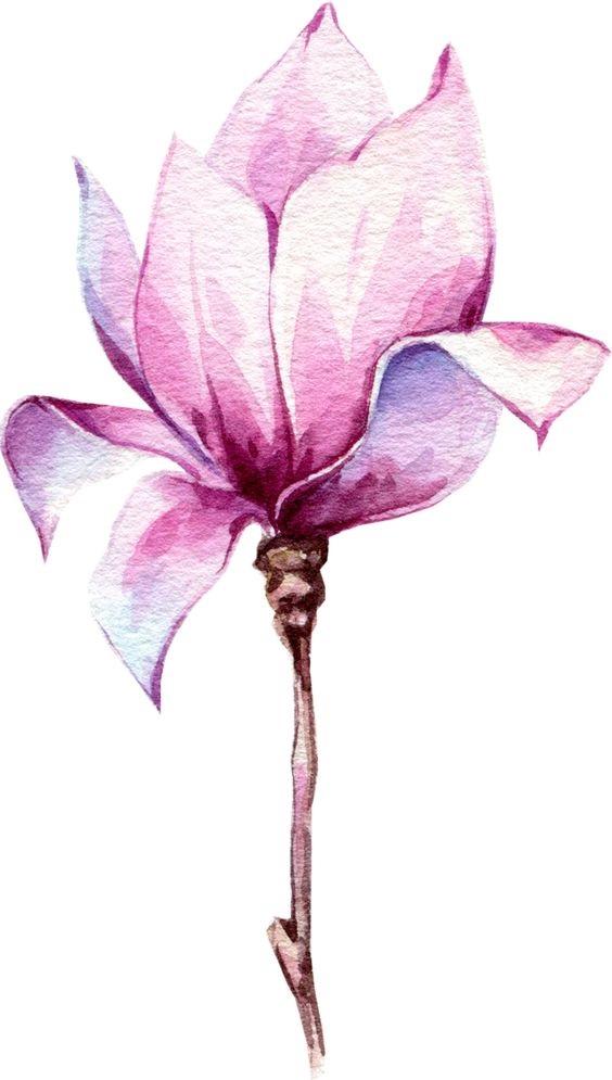 Как нарисовать красивые цветы фотоподборка (16)