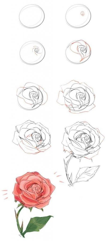 Как нарисовать красивые цветы фотоподборка (20)
