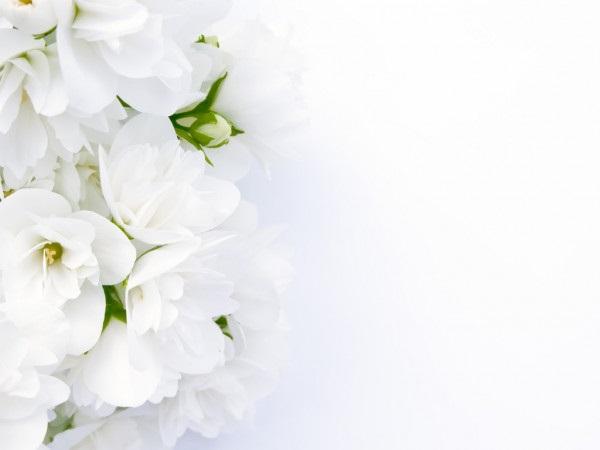 Как нарисовать красивые цветы фотоподборка (27)