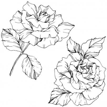 Как нарисовать красивые цветы фотоподборка (5)