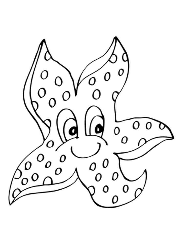 Картинка морская звезда для детей (13)