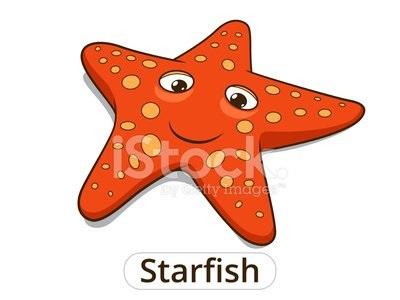 Картинка морская звезда для детей (3)