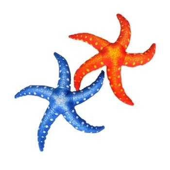 Картинка морская звезда для детей (4)