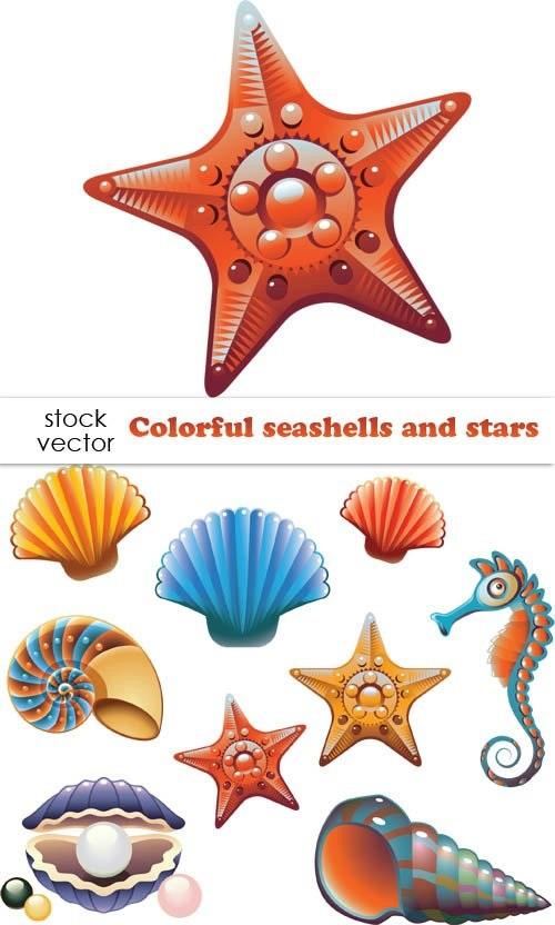 Картинка морская звезда для детей (9)