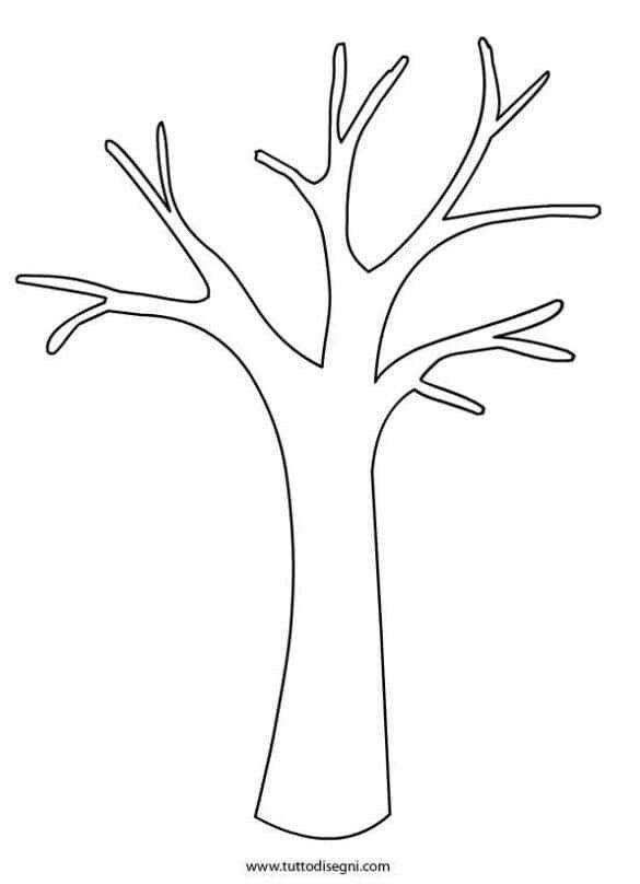 Картинка ствол дерева для детей (11)