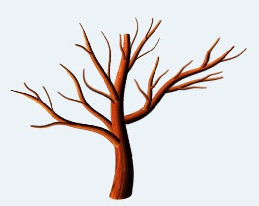 Картинка ствол дерева для детей (12)
