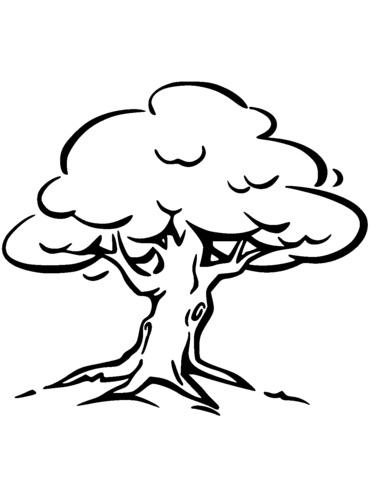 Картинка ствол дерева для детей (13)