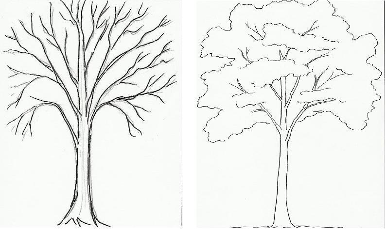 Картинка ствол дерева для детей (22)