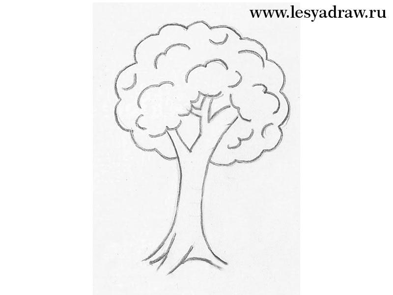 Картинка ствол дерева для детей (5)