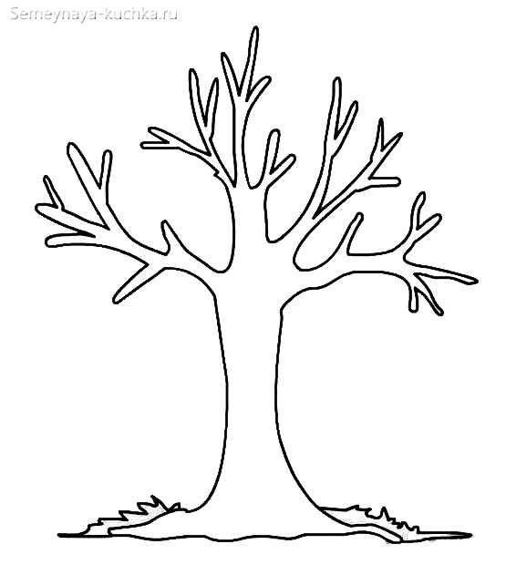 Картинка ствол дерева для детей (6)