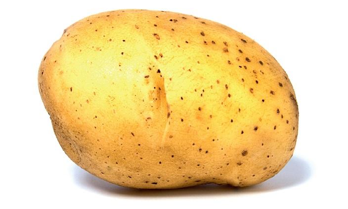 Картинки картошки для детей цветные (11)