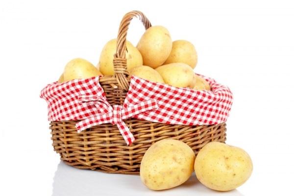 Картинки картошки для детей цветные (14)