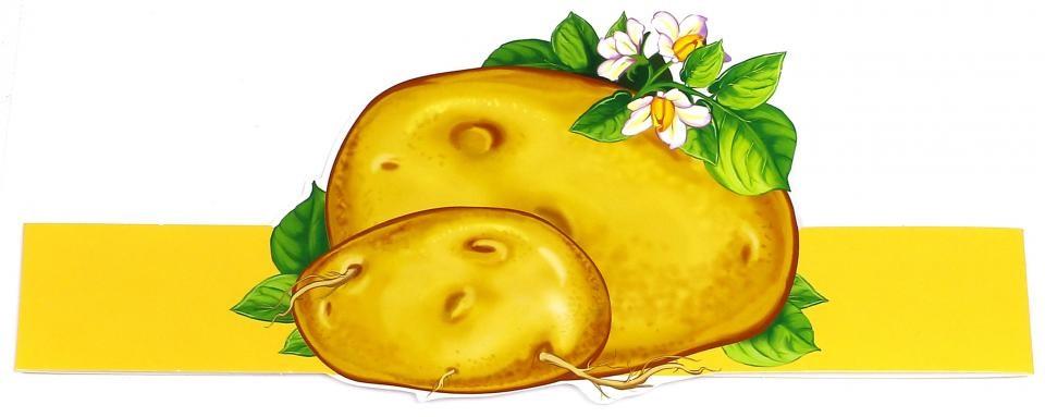 Картинки картошки для детей цветные (16)