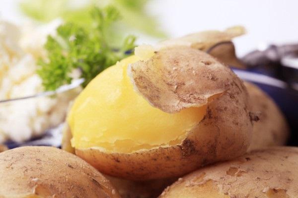 Картинки картошки для детей цветные (17)