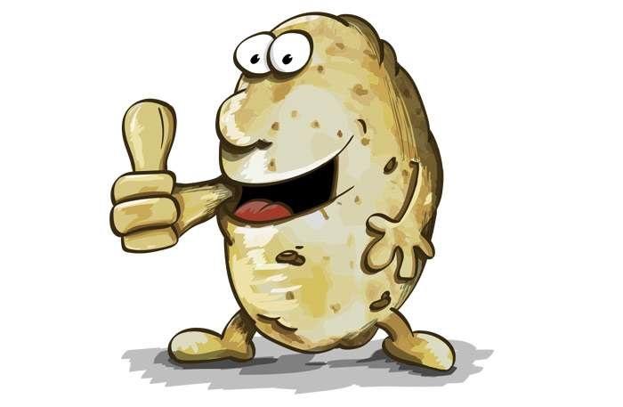 Картинки картошки для детей цветные (20)