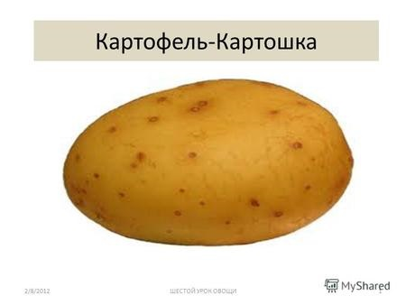 Картинки картошки для детей цветные (9)