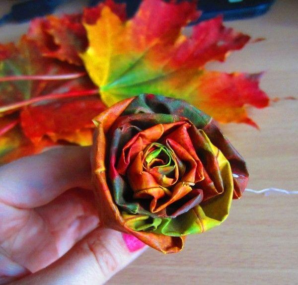 Картинки осенние букеты из цветов (3)