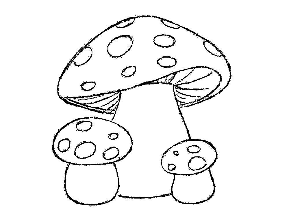Картинки раскраски мухомора для детей (18)