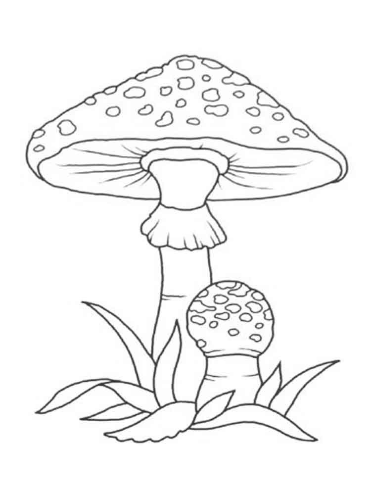 Картинки раскраски мухомора для детей (23)