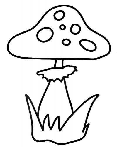 Картинки раскраски мухомора для детей (9)
