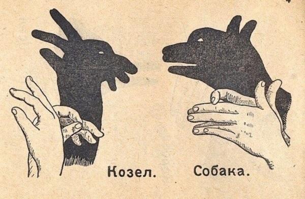 Картинки тени животных для детей (12)