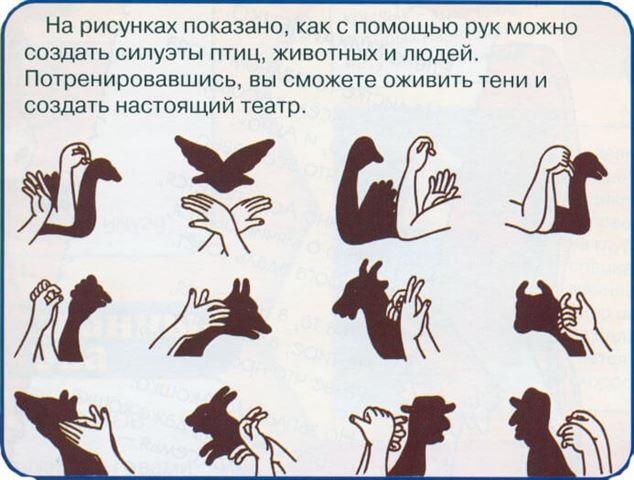 Картинки тени животных для детей (16)