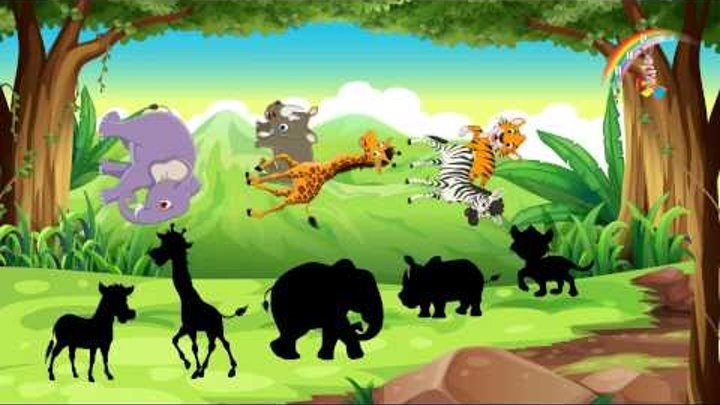 Картинки тени животных для детей (17)